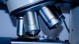 Morfologia krwi. Jak analizować badanie morfologiczne?