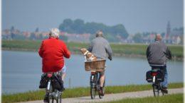 Opieka nad osobami starszymi za granicą – praca, w której rodzą się przyjaźnie