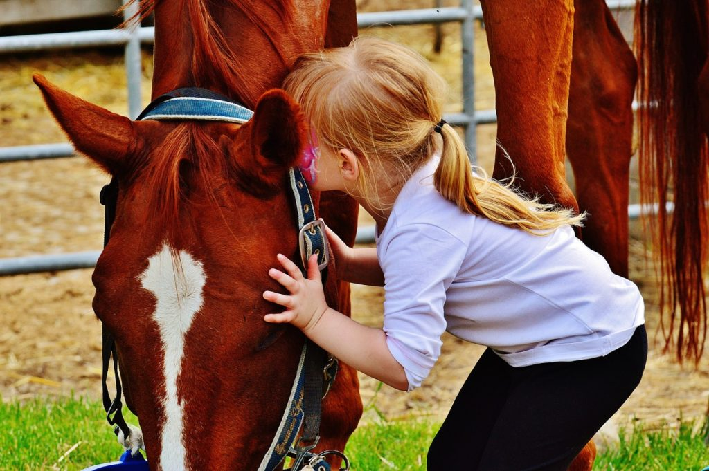 bezpieczne kolonie konne zaczynają się od oswojenia dziecka z koniem